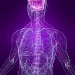 Southampton Osteopathy